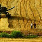 Tarım destek