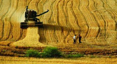 Tarımsal Üretime Destek Tam 500 Milyon TL