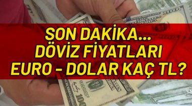 Dolar-Euro-Sterlin Döviz Fiyatları