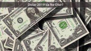 dolar-2019