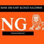 ing-bank-sim-kart