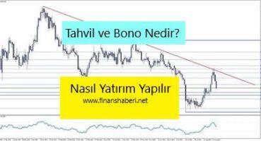 Tahvil ve bono nedir