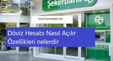 Şekerbank Döviz Hesabı Özellikleri