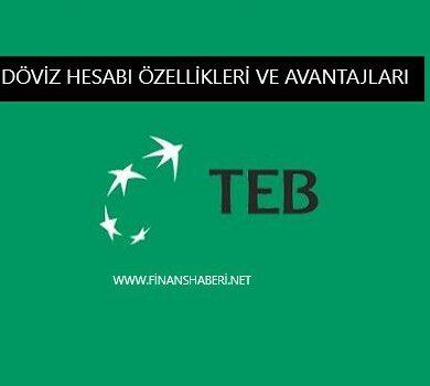 TEB Bankası Döviz Hesabı Özellikleri